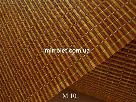 M 101