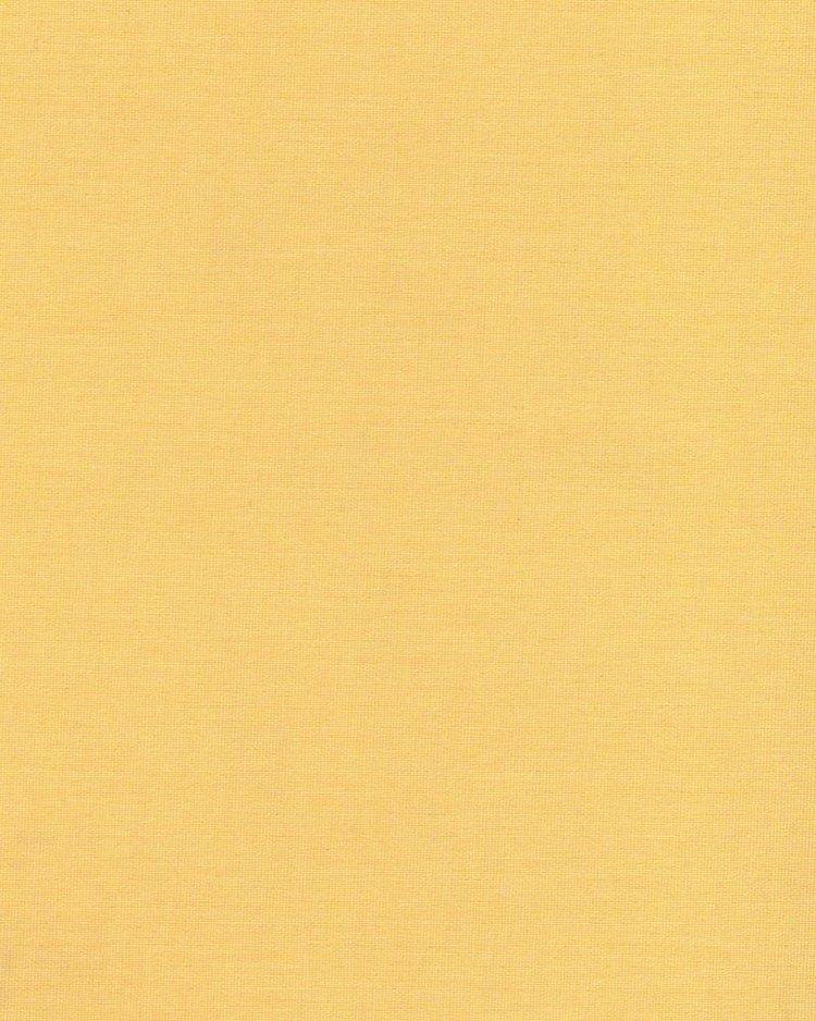 1003 Aра желтый