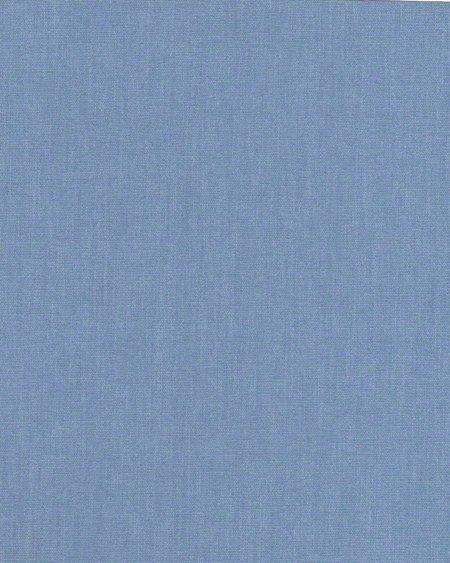 1004 Aра голубой