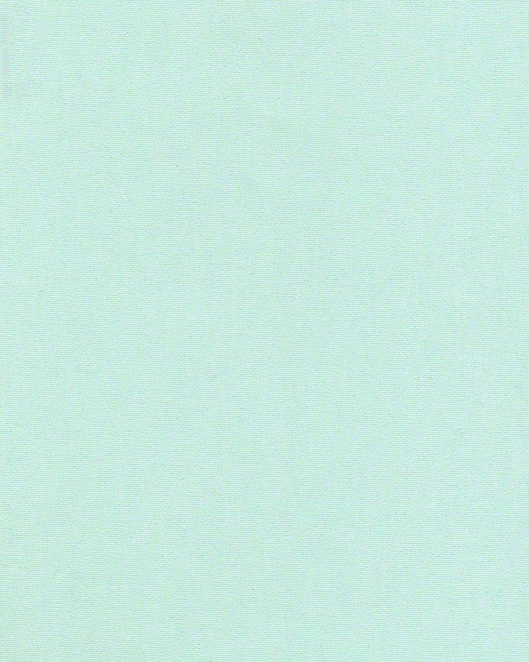 1008 Ара светло-зеленая