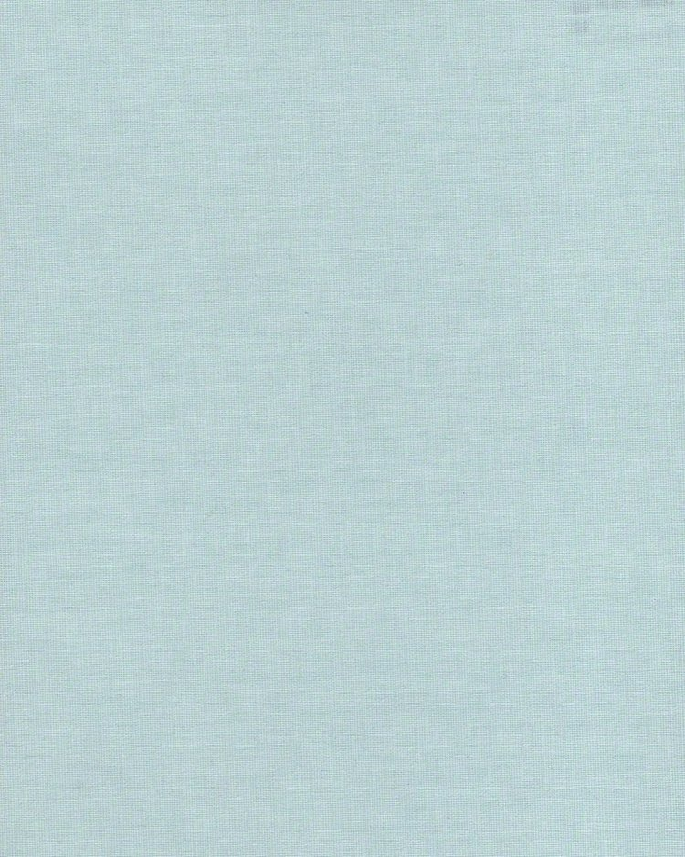 1009 Ара светло-голубая