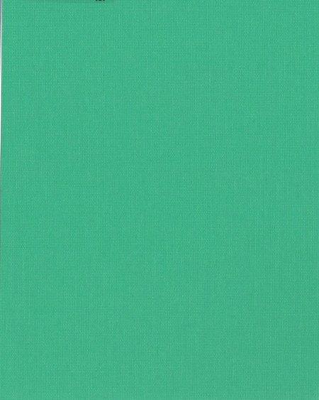 1059 Ара ярко-зеленый