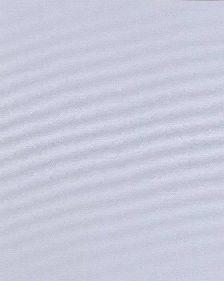1064 Ара лиловый
